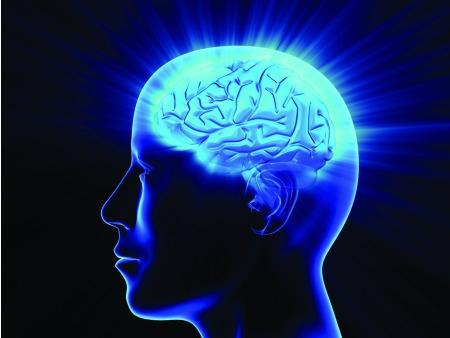 anatomia-judaica-cabeca-cerebro