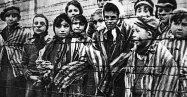 Destruição dos Judeus Europeus