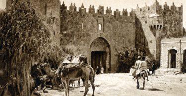 israel-portal-esperanca