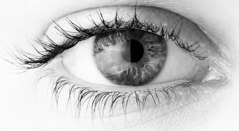 olhos-janelas-mundo